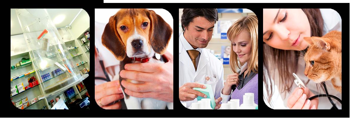 Medicinali veterinari per la cura dei nostri amici animali